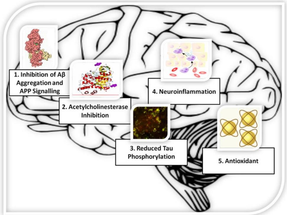Targets od cannabinoid activity