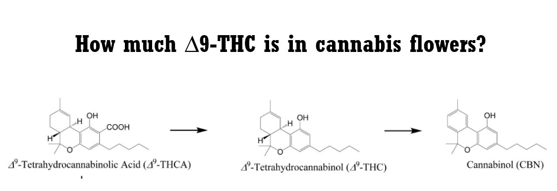 How much  ∆9-THC is in cannabis flowers?