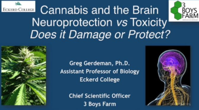 Gregory Gerdeman, PhD, Assistant Professor of Biology at Eckerd College and expert on the physiology and evolutionary neurobiology underlying the endocannabinoid system (ECS) presents to SCC at the June quarterly meeting.